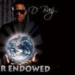 D'Banj – Mr Endowed + Remix  (ft. Snoop Dogg)
