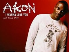 Akon I Wanna Love You (ft. Snoop Dogg)